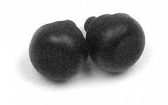 Shears shock absorber B1000L