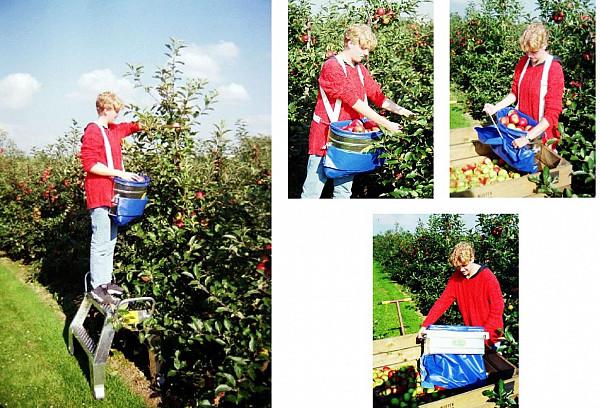 Harvesting box